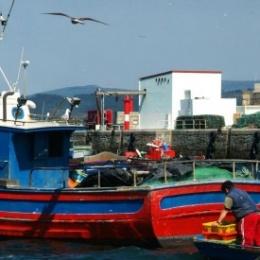 Guerra dei confini, Italia lascia alla Francia le acque più ricche di gamberoni e pesci spada