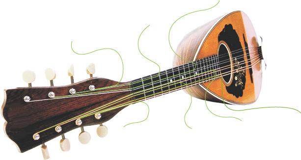 mandolinogrande