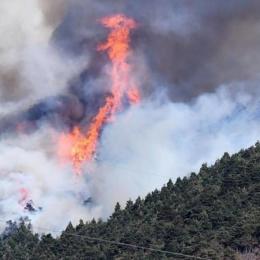 """Incendio doloso, brucia il Piemonte da una settimana. Ma nessuno scrive: """"si incendiano da soli"""""""