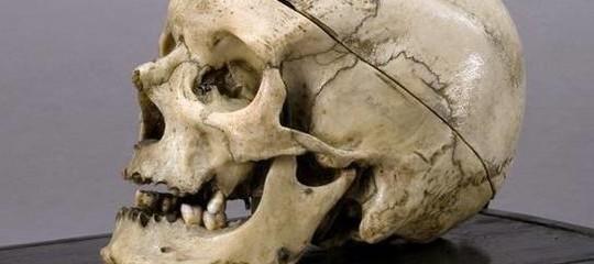 Cranio Brigante Villella