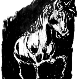 Il mito del cavallo Napoletano, invidiato da tutto il mondo