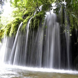 I capelli di Venere, una cascata da favola nel cuore verde del Cilento!