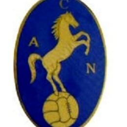 Da Cavallo A Ciuccio: La Trasformazione Del Logo Del Napoli