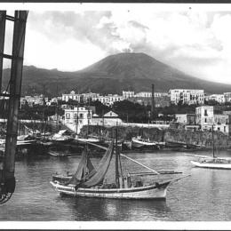 """I Borbone e la """"Spugna d'oro"""" del Mediterraneo"""