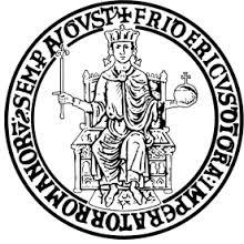 Federico II Re di Sicilia, Duca di Svevia, Re di Germania, Imperatore del Sacro Romano Impero, infine Re di Gerusalemme