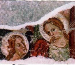 Carinola angioina