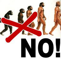 LETTERE ALLA REDAZIONE: IL FALLIMENTO DI DARWIN E DELL'EVOLUZIONISMO