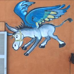 """""""Ciuccio fa tu""""! Il simbolo del Napoli dal cavallo al ciucciariello"""