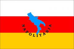 Il napoletano scritto e parlato: regole di una lingua viva
