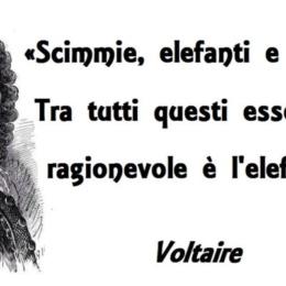Voltaire? Un impostore, il più intollerante tra gli illuministi»